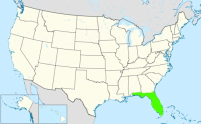 Phone numbers of the state Florida