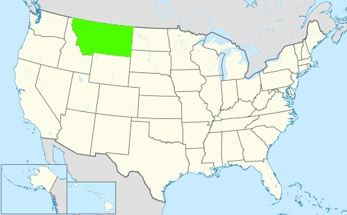 Phone numbers of the state Montana